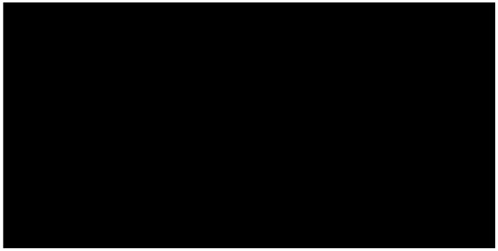 GGBailey - Logo - Atlanta Journal Constitution